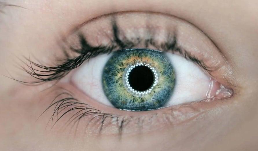 Oeil bleu avec lentille